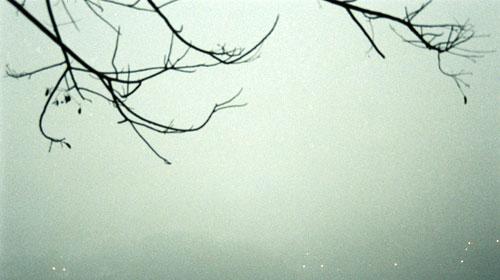 ImageView.aspxThumbnailID535834